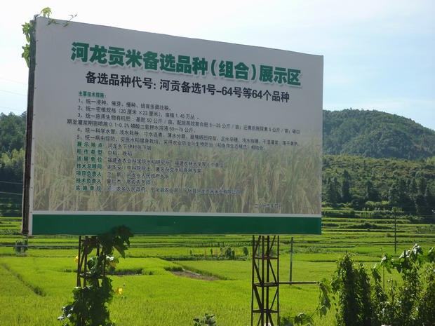 宁化县河龙贡米米业有限公司