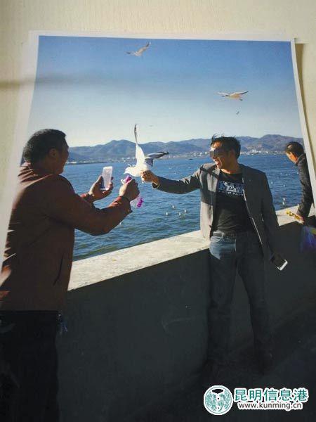 一男子抓海鸥拍照