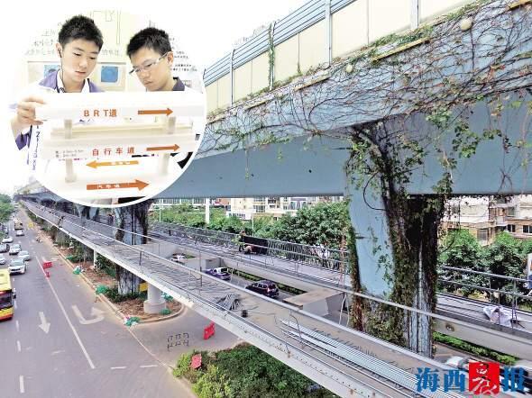 厦门BRT空中自行车道 是初二学生8年前的构想
