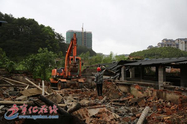 翠江镇拆除禁养区生猪养殖场8000平方米