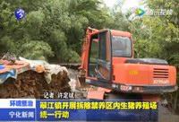 翠江镇开展拆除禁养区生猪养殖场统一行动