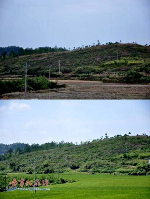 农村山边风景