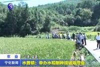 水茜镇:举办水稻制种现场观摩会