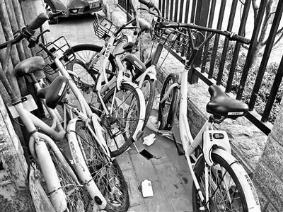 深圳男子骑单车天桥坠亡 共享单车频现刹车问题
