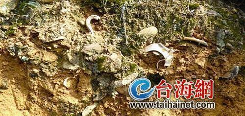 长泰发现一处龟山遗址 预计9月份进场发掘