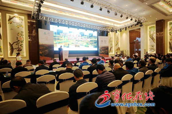 宁化河龙贡米2019年品牌战略发布会在福州隆重举行