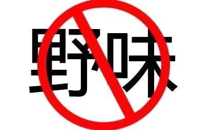 懲治亂ye)獨氖shi)野生動(dong)物行為需完善立法加強執(zhi)法