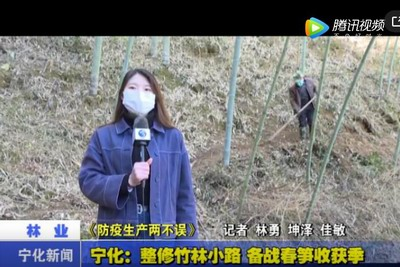 寧化︰整修竹林小路(lu) 備戰春筍收獲季