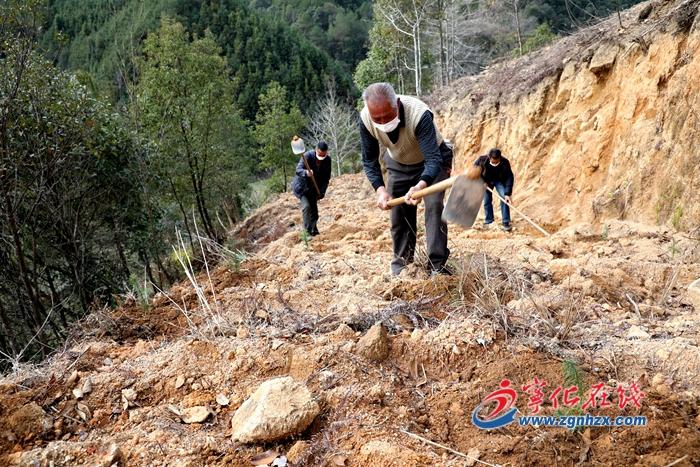 寧化︰完成植樹造林1316畝